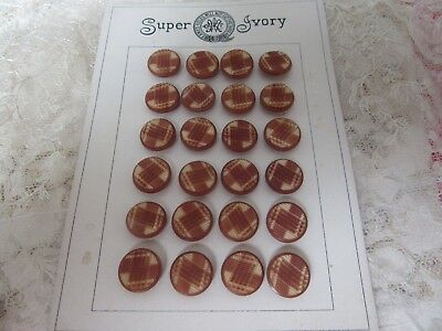 Antique original card of 24 Vegetable Ivory (tagua nut) buttons - carved