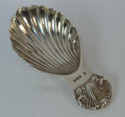 Quality Sterling Silver Shell Tea Caddy Spoon