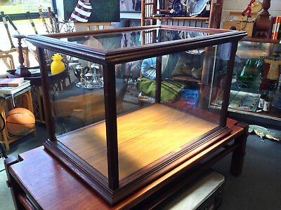 Steampunk Vintage Timber And Glass Taxidermy Curio Large Display Case E/c