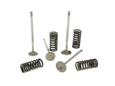 Valve Kit MALOSSI RACING with Springs for Piaggio 4-ventil LC Engines