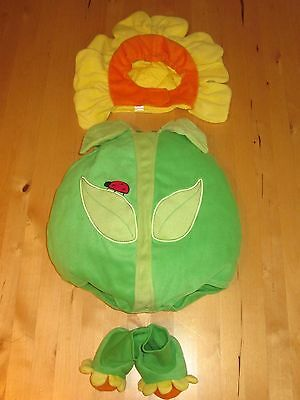 NEW CHILDREN'S PLACE INFANT HALLOWEEN COSTUME WARM GIRL BOY FLOWER DAISY 0-6 mon