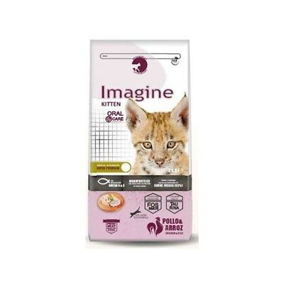 Pienso IMAGINE CAT KITTEN para gatitos (Gatitos de 2 a 12 meses)