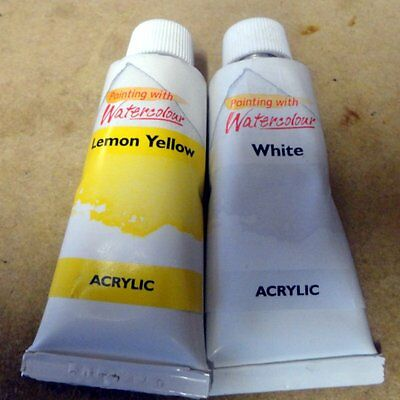 ACRYLIC PAINTS - 2 tubes 22ml each