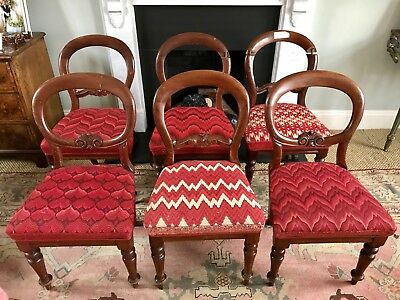 6 Victorian Mahogany Balloon Back,Embroided Dining Chairs