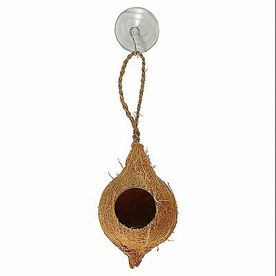 Hanging Coconut Hide With Suction Cup
