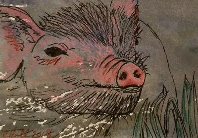 ACEO original pink piggy sow ink drawing happy farm animal by artist C Hull