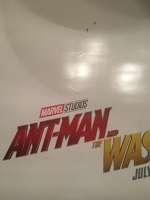 Ant Man And The Wasp-(2018) 27X40 (Ds) Large Movie Poster-Paul Rudd-Teaser