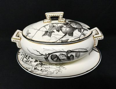 RARE Brown Staffordshire ORNITHOLOGY Sauce Tureen ~ BIRDS 1870