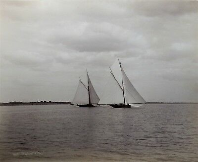 Large Albumen Photograph Of The Yachts Neptune & May By Nathaniel Stebbins 1886