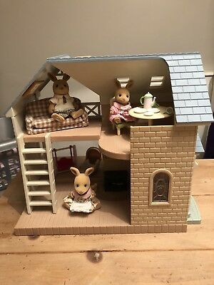 Sylvanian Families Blue House And Extra's