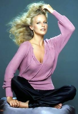 CHERYL LADD Show 80s /& 90s Posters Teen TV Movie Poster 24X36 B