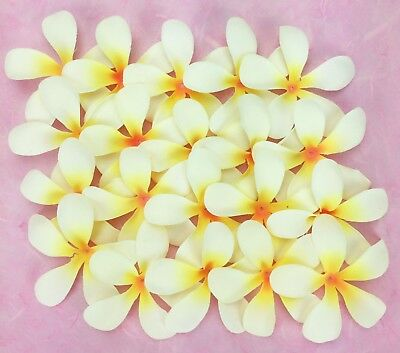 50 Fabric 7cm FRANGIPANIS Craft/Wedding/Hair Decoration/Table Scatter Cream