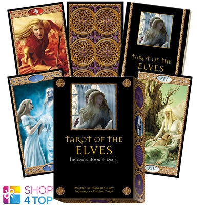 Tarot Of The Elves Cards Deck Book Box Set Corsi Mcelroy Lo Scarabeo New