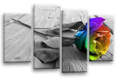 Floral Rainbow Rose Canvas Picture Grey Love Flower Split 4 Panel Wall Art SET 1