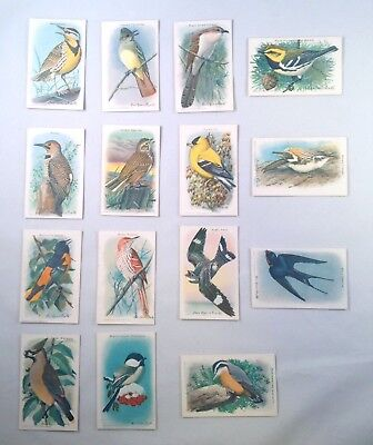 Complete Card Set 10th Series Arm And Hammer Useful Birds
