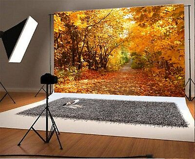 Autumn Maple Wood Passage Photography Background 3x2ft/7x5ft/10x8ft Backdrops