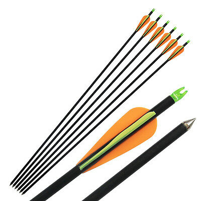 "6Pcs 33"" Archery Hunting Fiberglass Arrows Recurve Compound Bow Target Shooting"