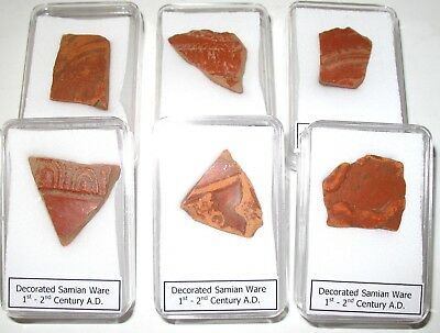 Roman Samian Ware Terra sigillata pottery shard decorated Non UK find COA