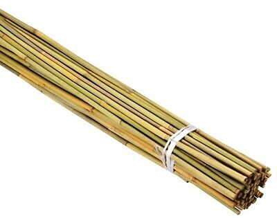 Bamboo Garden Stakes 900 mm x 8-10 mm (60 Pack)