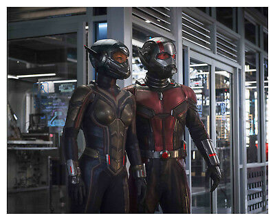 """---ANT-MAN And The WASP-- """"PAUL RUDD & EVANGELINE LILLY""""-- 8x10 Photo"""