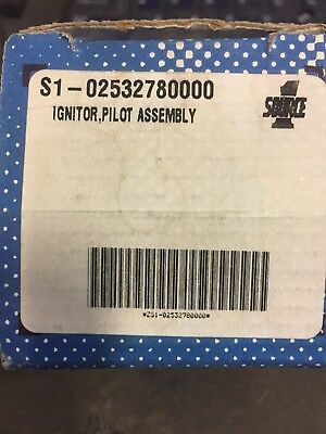 York S102532780000 Pilot Ignitor Assembly