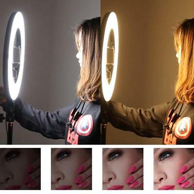 Dimmable 2700-5500K Photo Video Continuous LED Ring Light Kit Stand +Storage-Bag