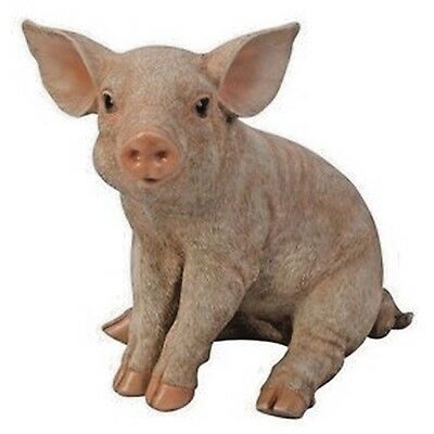 Pig Sitting Small Version Realistic Life Like Statue Home Garden Yard Decor