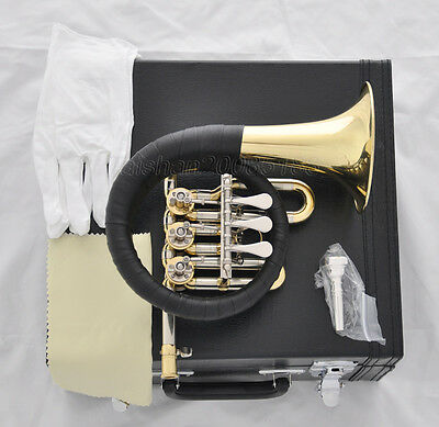 Professional Rotary ValVES Bb GOLD Post Horn +FREE Mouthpis LeatherCase