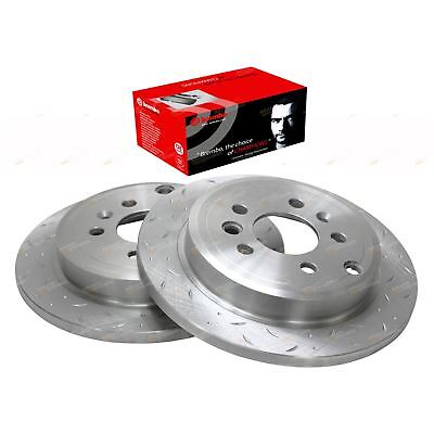 2 Rear Slotted+ Drilled Brake Rotors + Brembo Disc Pads Ford Falcon BA BF 02-12