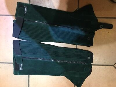 Green Suede Rhinegold XL Half Chaps. Riding Chaps.