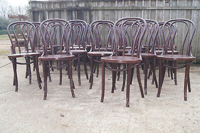 job lot of 24 bentwood loopback cafe chairs 5 damaged