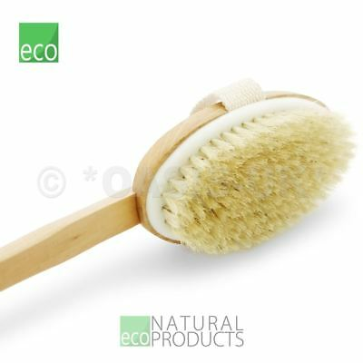 """Top Choice Wooden Body Brush  Massager One Side 17"""" (43cm)"""