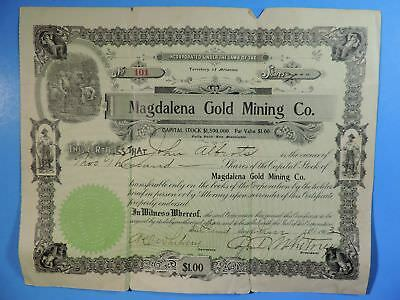 1903 Magdalena Gold Mining Co Territory of Arizona 2000 Shares Stock Certificate