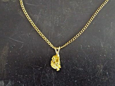 Virginia City Gold Nugget Pendant (.95dwt, 1.5grams)