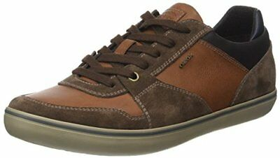 Marrone 39 EU GEOX U BOX K SCARPE UOMO EBONY/BROWNCOTTO 8058279050891