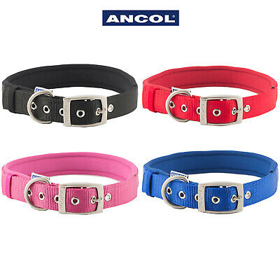 Ancol Neoprene Padded Nylon Collar with Metal Eyelets Soft & Strong in 4 Colours