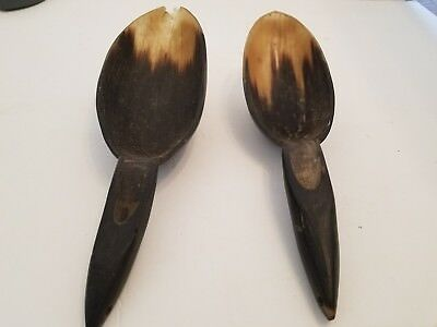 Plains Buffalo Horn Carved Spoon, Native American Indian Scoop  Rare  Horn