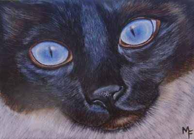 "ACEO Original Painting Miniature ""Blue Eyes"" Siamese Cat Face Animal Acrylic Art"