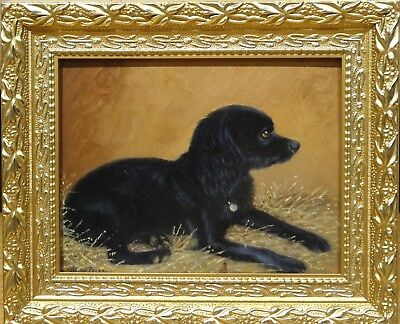 Fine Circa 1900 Black English Cocker Spaniel Dog Portrait Antique Oil Painting