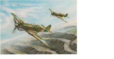 Jay Ashurst - Tigers Two - P-40