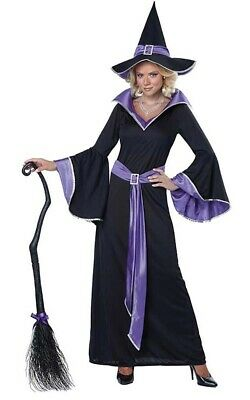 Incantasia The Glamour Witch Adult Womens Fancy Dress Halloween Costume
