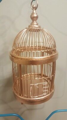 Gold Painted Bird Cage