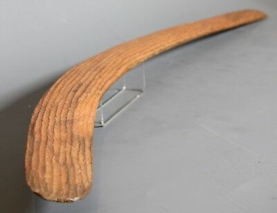 Finely fluted Aboriginal hunting and fighting boomerang  1940s