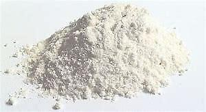 Natural Flea Repellent Diatomaceous Earth Powder 500g for Dogs/Cats