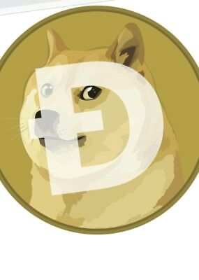 Mining contract 1000 Dogecoin PAYPAL