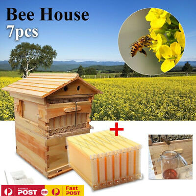 New Beekeeping Beehive Brood Wooden House Box +7PCS Auto Flow Honey Hive Frames