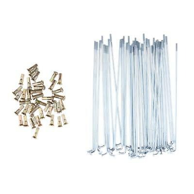 36 pcs Racing Arrière Chrome Spoke Set Pour Honda CR125R CR250R CRF250R