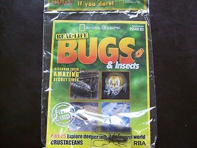 National Geographic Real-life Bugs & Insects magazine Issue 82