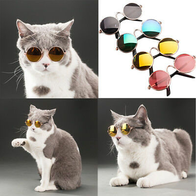 Fashion Glasses Small Pet Dogs Cat Cool Glasses Sunglasses Eye-wear Protection
