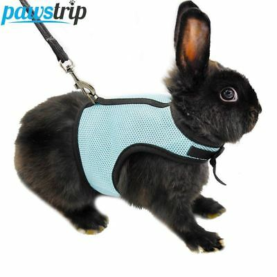 3 Colors Hamster Rabbit Harness And Leash Set Ferret Guinea Pig Small Animal Pet